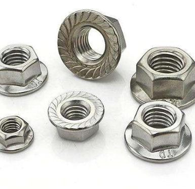 SS304 hex flange nut polos